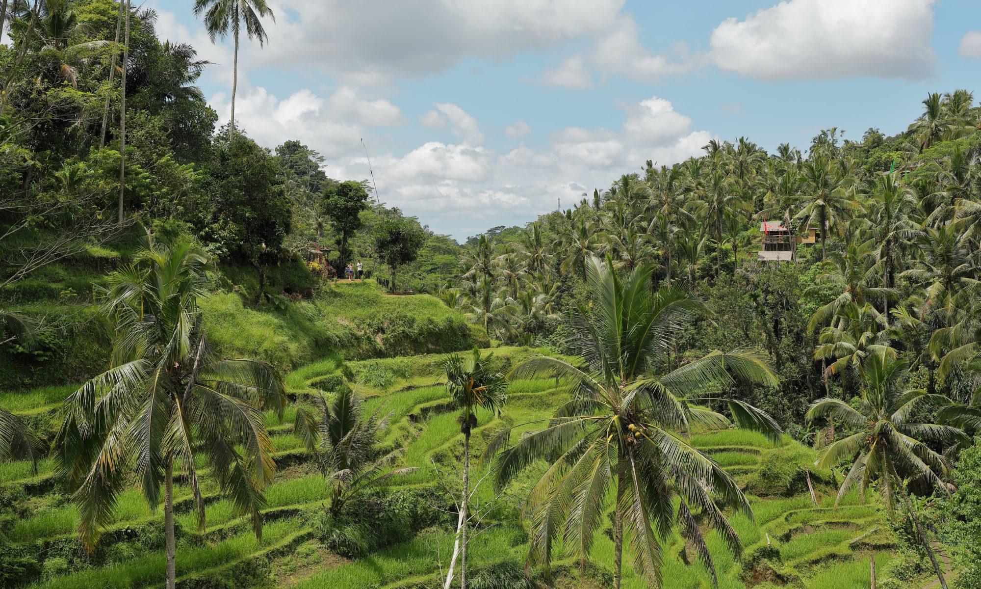 eductrade-indonesia
